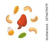 set cashew nut vector...   Shutterstock .eps vector #1076670479