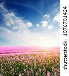 spring flower field and blue... | Shutterstock . vector #1076701424