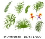 tropical palm leaves  jungle... | Shutterstock .eps vector #1076717000