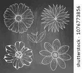 hand drawn vintage floral... | Shutterstock .eps vector #1076773856