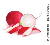 fresh  nutritious  tasty red...   Shutterstock .eps vector #1076784080
