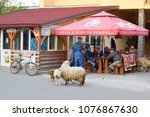 Small photo of SAPANTA, ROMANIA - APRIL 26, 2017: Street view of traditional romanian village with villagers drinking beer after job and sheep - traditional maramures farm animals, Sapanta, Romania on April 26, 2017