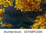 Autumn nature Background. Colorful Leafes under sunlit over the azure water at Gosausee Mountain lake. Wonderful Autumn Landscape in Apls