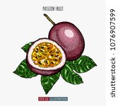 hand drawn passion fruit... | Shutterstock .eps vector #1076907599