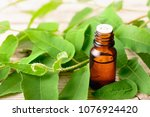 eucalyptus essential oil and... | Shutterstock . vector #1076924420