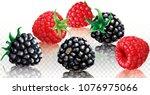 blackberries and raspberries on ...   Shutterstock .eps vector #1076975066