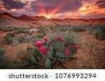 Amazing Spring Sunset In The...