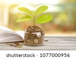 plant growing from coins in the ... | Shutterstock . vector #1077000956