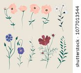 set of wild meadow flowers and... | Shutterstock .eps vector #1077013544