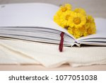 beautiful card with a small... | Shutterstock . vector #1077051038
