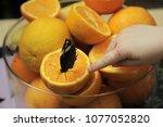 butterfly eats orange  | Shutterstock . vector #1077052820