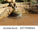 fountain of youth | Shutterstock . vector #1077058064