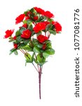 Roses Artificial Red Isolated...