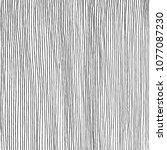 hand drawn vertical parallel... | Shutterstock .eps vector #1077087230