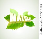 green leafs with natural sign | Shutterstock .eps vector #107710169