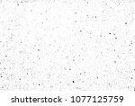 black spots on white background ... | Shutterstock . vector #1077125759