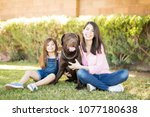 cute little girl with cheerful... | Shutterstock . vector #1077180638