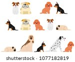 cute dogs border set2 | Shutterstock .eps vector #1077182819