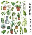 watercolor set of green plants... | Shutterstock . vector #1077205256