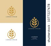 luxury grain wheat logo concept ... | Shutterstock .eps vector #1077227678