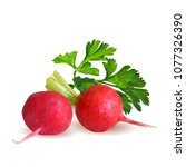 fresh  nutritious  tasty red...   Shutterstock .eps vector #1077326390