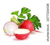 fresh  nutritious  tasty red...   Shutterstock .eps vector #1077326438