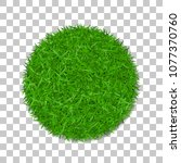 grass circle 3d. green plant ... | Shutterstock .eps vector #1077370760