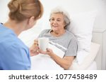 caregiver giving cup of tea to...   Shutterstock . vector #1077458489