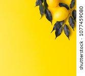 creative summer pattern made of ... | Shutterstock . vector #1077459080