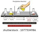 precipitation reaction... | Shutterstock .eps vector #1077534986