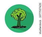 hand drawn tree icon | Shutterstock .eps vector #1077537620