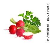 fresh  nutritious  tasty red...   Shutterstock .eps vector #1077544064