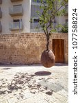 suspended orange tree in old... | Shutterstock . vector #1077588224