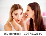 close up portrait of pretty two ... | Shutterstock . vector #1077612860