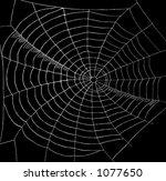 spiderweb | Shutterstock . vector #1077650