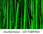 background image of bamboo... | Shutterstock . vector #1077689504