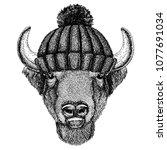 buffalo  bison ox  bull cool... | Shutterstock .eps vector #1077691034