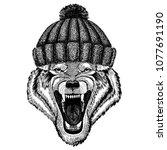 wolf dog wild animal cool... | Shutterstock .eps vector #1077691190