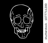 skull vector illustration. | Shutterstock .eps vector #1077711200