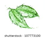 green leaf | Shutterstock . vector #107773100