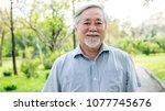 portrait of senior man in park. ...   Shutterstock . vector #1077745676