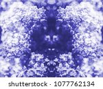 blue color toned chromacity of... | Shutterstock . vector #1077762134