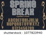 font alphabet script typeface... | Shutterstock .eps vector #1077823940