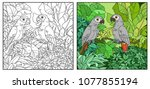 wild jungle with two parakeets... | Shutterstock .eps vector #1077855194
