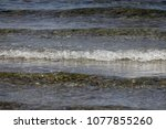 the sea waves | Shutterstock . vector #1077855260