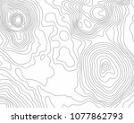 abstract black and white... | Shutterstock .eps vector #1077862793
