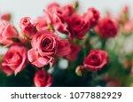 Fresh Garden Pink Roses Bouque...