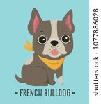 icon dog breed french bulldog.... | Shutterstock .eps vector #1077886028