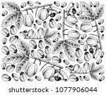tropical fruits  illustration... | Shutterstock .eps vector #1077906044