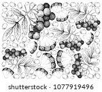 tropical fruits  illustration... | Shutterstock .eps vector #1077919496